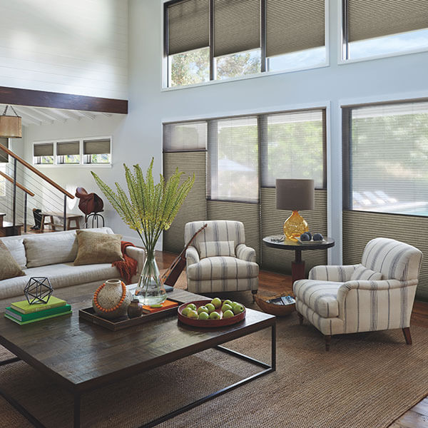 Hunter Douglas living room window shades in Tucson, AZ